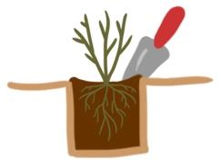 plantrose